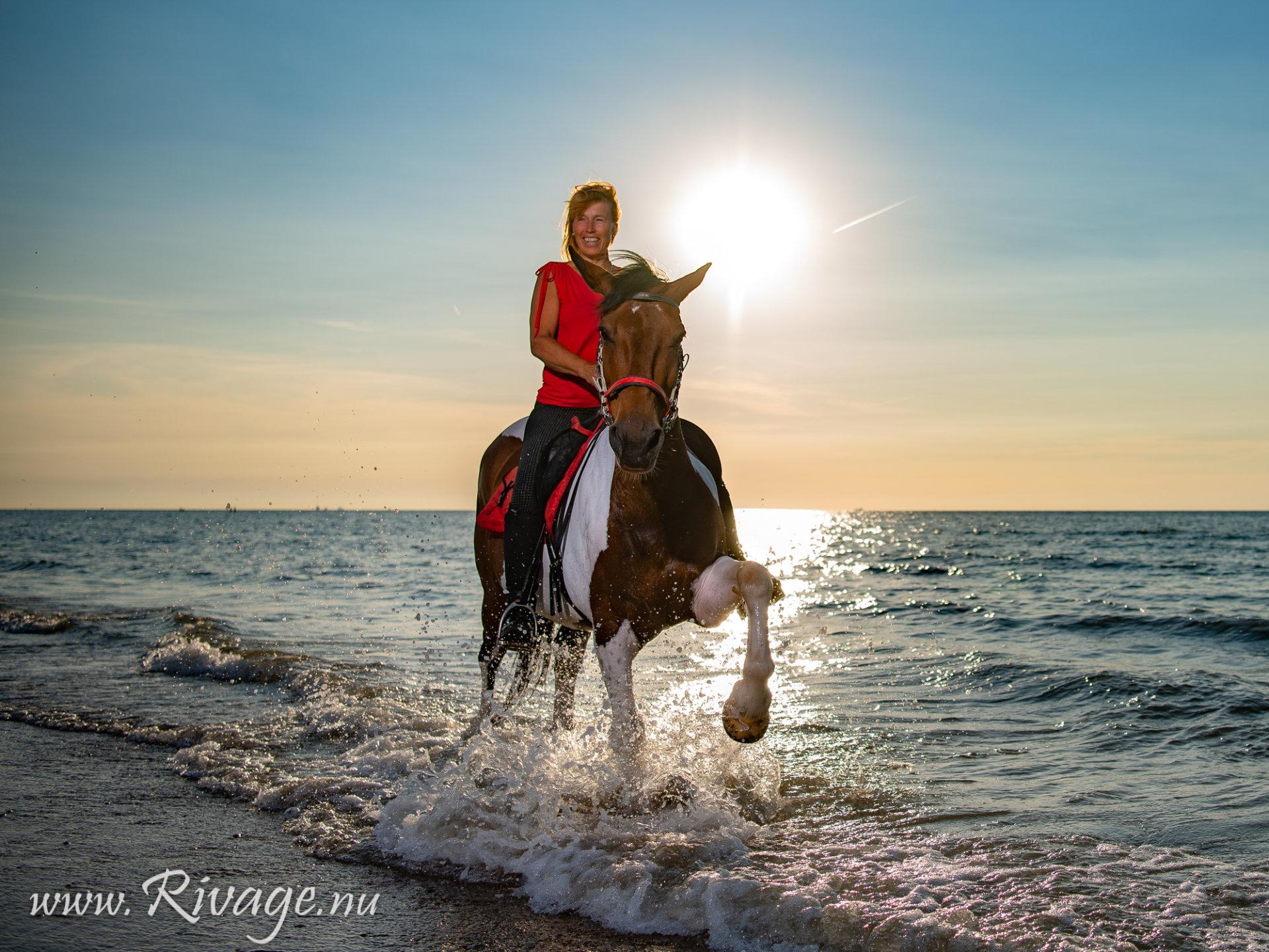 Paarden fotoshoot strand aan zee